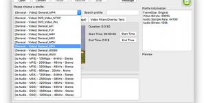 Convert 4K, MOV, MKV, AVI, FLV, WMV, VOB & 3GP to MP4