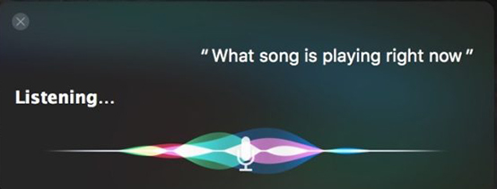 Activate Siri and Ask Question