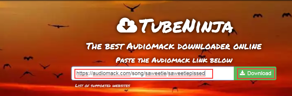 Paste Audiomack URL on TubeNinja